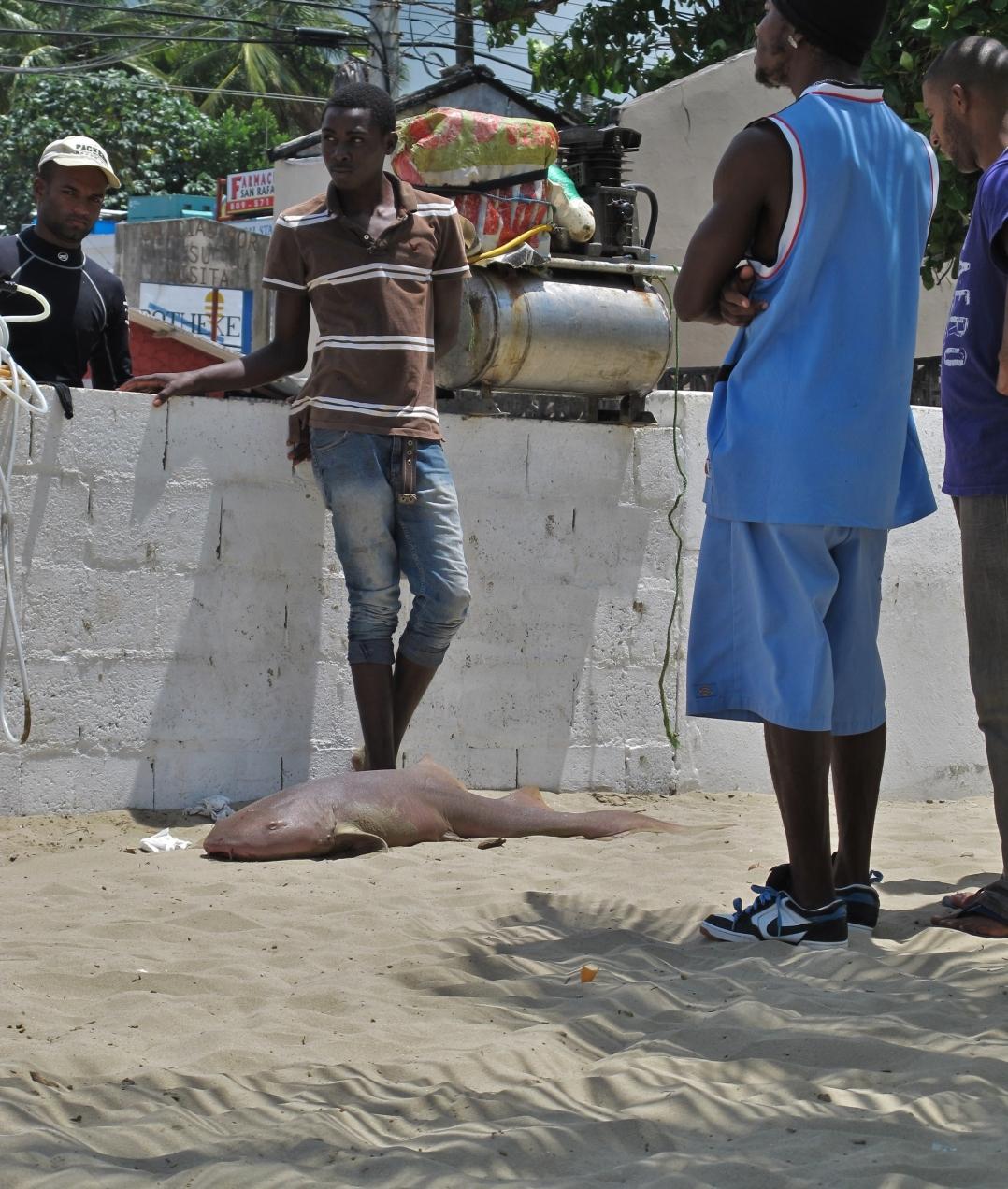 dominican-republic-2011-15