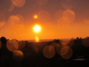 Suns (5)