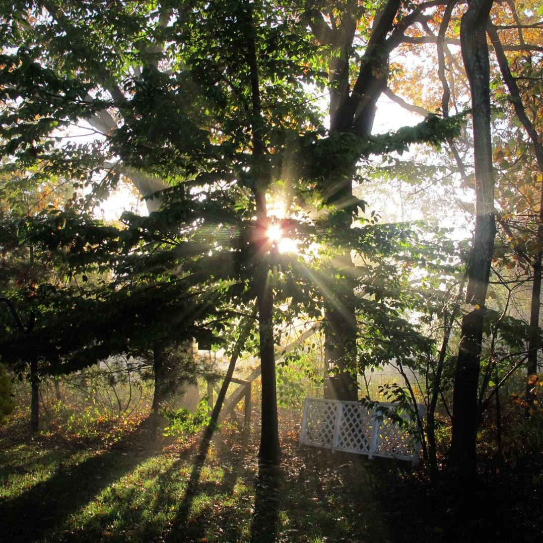 autumn-in-ct-1