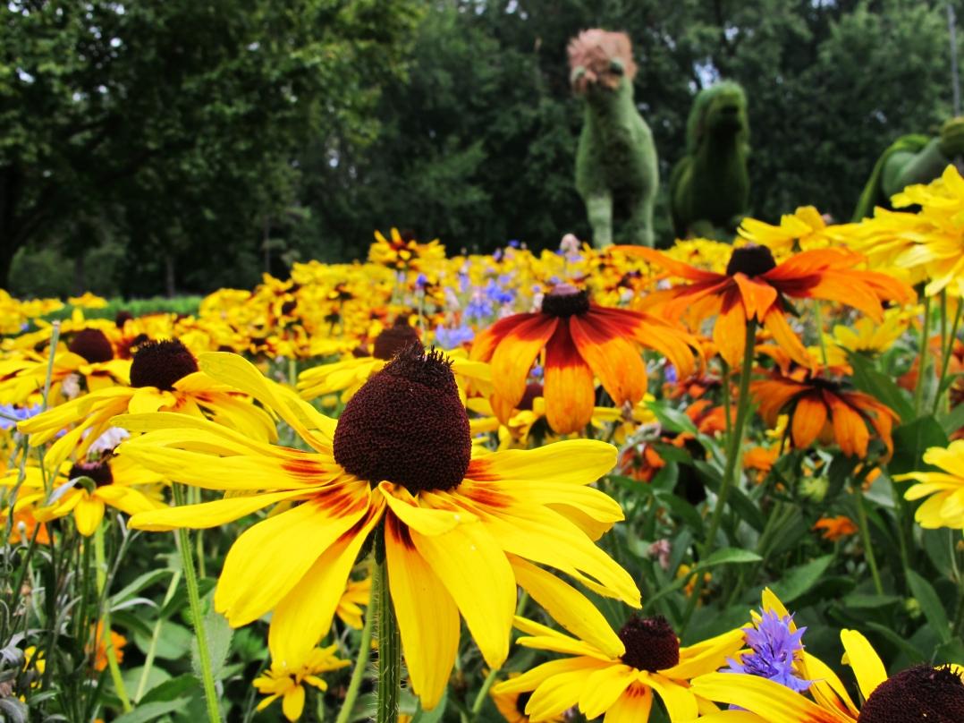 montreal-botanical-garden-sculpture-show-2