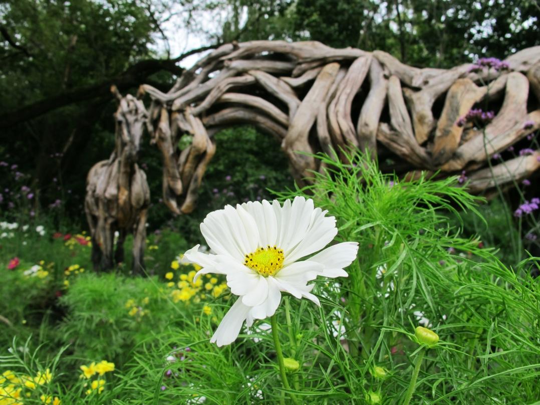 montreal-botanical-garden-sculpture-show-7