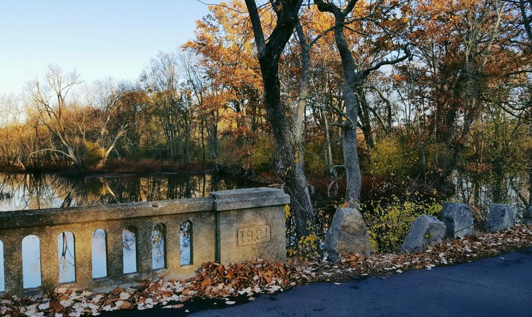 autumn-in-tospfield-2016-3