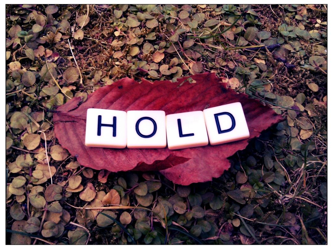 hold-2