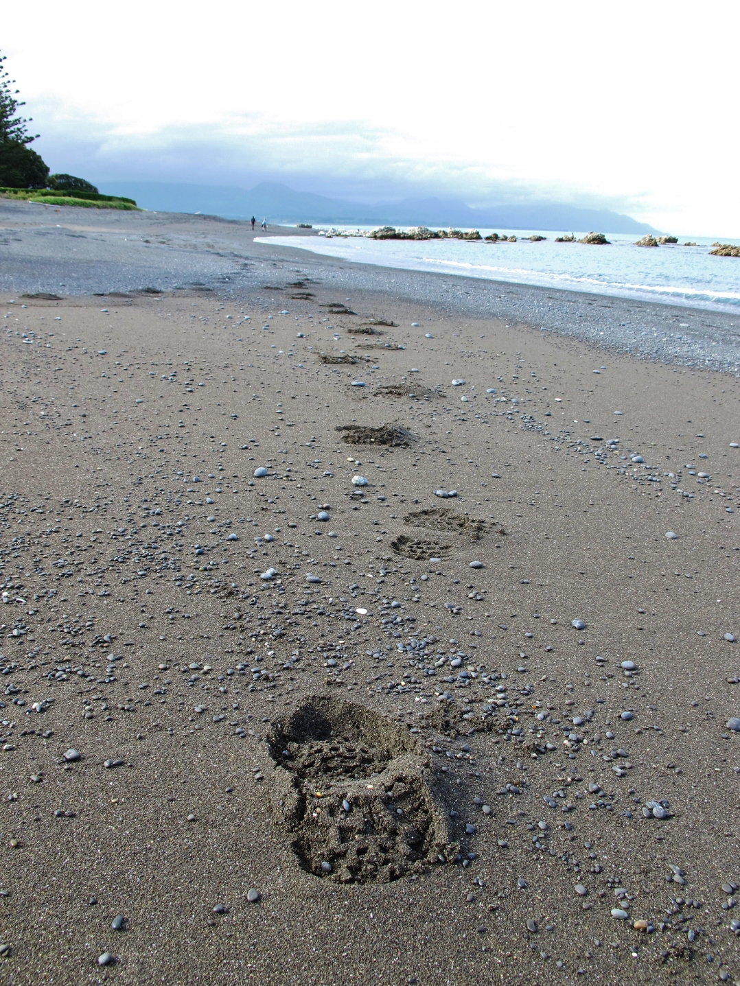 15-kaikoura-beach-walk
