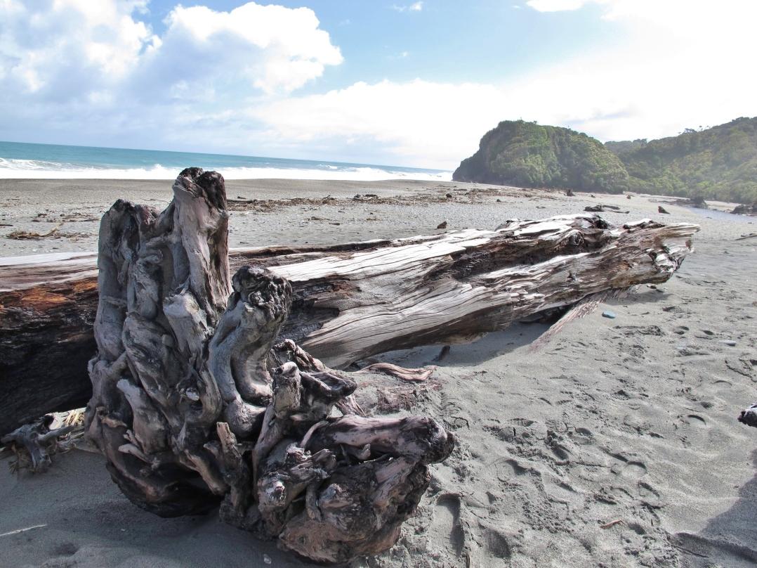 20-driftwood