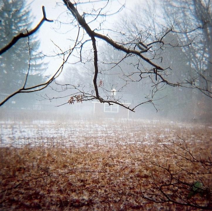 ct-woods-1