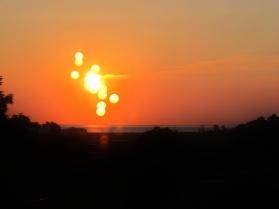 Suns (1)