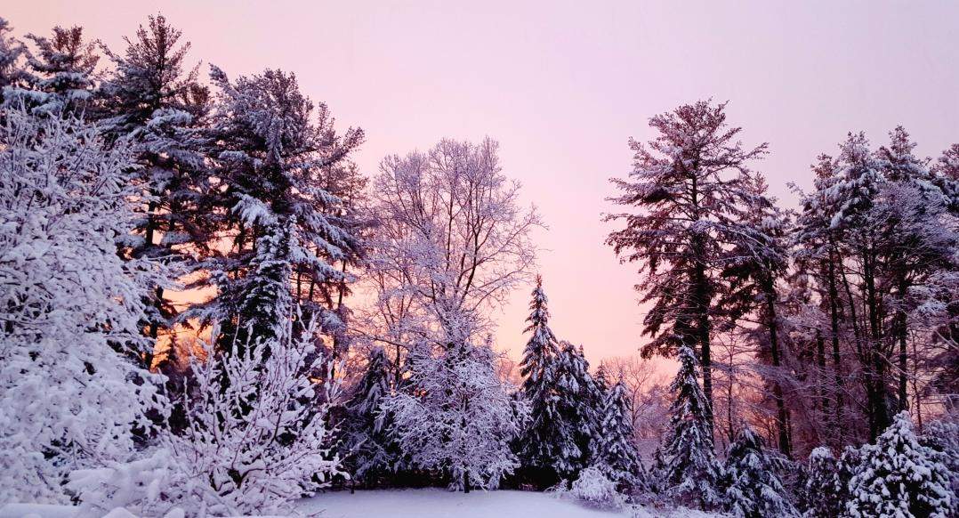 Topsfield 2.5.16 snow storm (2)