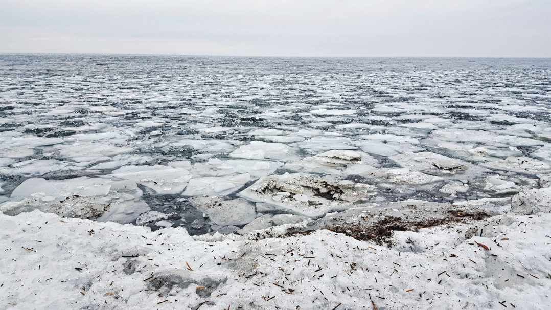Ice age (3)