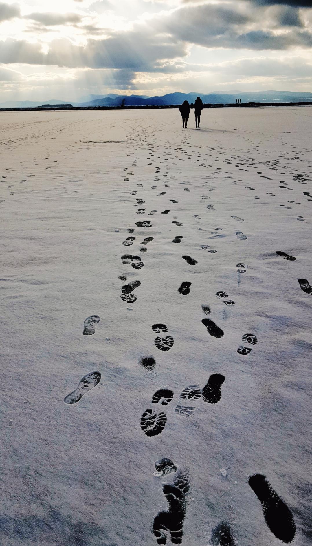 Ice Walkers VT (7)